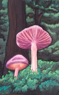 Wild Mushrooms (watercolour) Una Verdandi, 2017