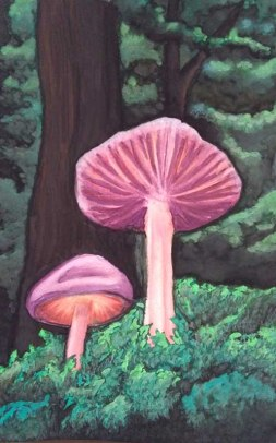 Wild Mushrooms, Watercolour on paperCopyright Una Verdandi, 2017
