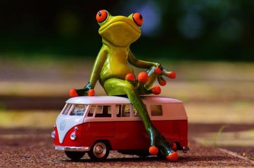 frog_van_small