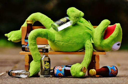 kermit_drunk_small